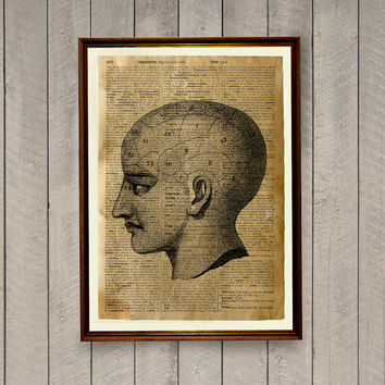 Anatomy illustration Human head poster Vintage decor Old dictionary print