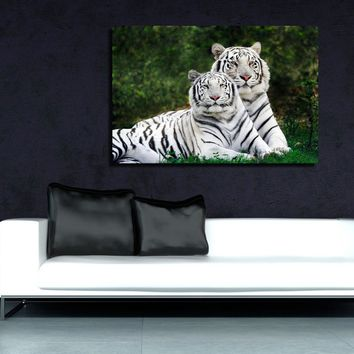 canik84 Canvas Print Stretched Wrapped white tigers animals big cat 26x40""