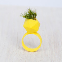 Wearable Planter Icosahedron Ring in Yellow