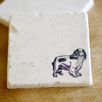 King Charles Spaniel Marble Coasters