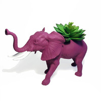 Up-cycled Large Sized Mulberry Elephant Planter