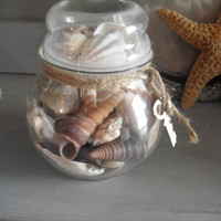 Vintage Sea Shells in Glass bulb top Jar with twine and Antique Key ~~ Beach Cottage decor