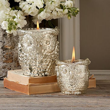 Antiqued Siver Owl Candle Holders