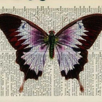 vintage violet butterfly artwork  printed on old by FauxKiss