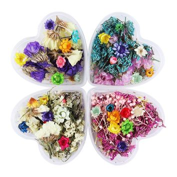 1 Box Colorful Mixed Dried Flowers Nail Art DIY Lavender Preserved Flower With Heart-Shaped Box Glass Bottle Decoration DIY