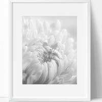 Wall Decor, Flower Decor, Instant Download, Floral Printable, Digital Print, Flower Art, Wall Art, 8x10, Romantic, Black White, Art