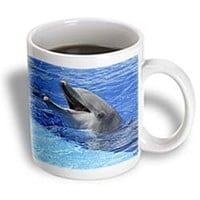 3dRose Dolphin with its Mouth Open at Oceanographic Aquarium in Valencia Spain Ceramic Mug, 11-Ounce