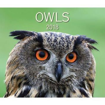Owls Wall Calendar, Birds by Firefly Books Ltd