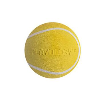 Playology Squeaky Chew Ball Dog Toy Chicken Scent | Petco