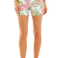Search Results on 'bat' - Lilly Pulitzer