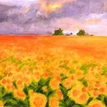 Sunflower Field by Kira Pierce Fine Art Print