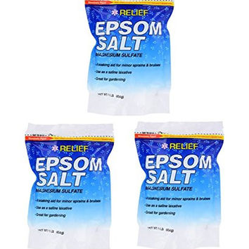 Epsom Salt Magnesium Sulfate 16 Oz Resealable Bag (Pack of 3)