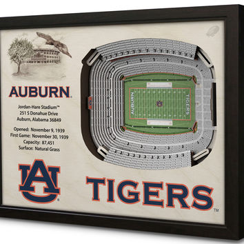 NCAA Auburn Tigers Football 3D Stadium View Wall Art Jordan-Hare Stadium