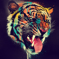 FEROCIOUS TIGER Stretched Canvas by Dzeri29