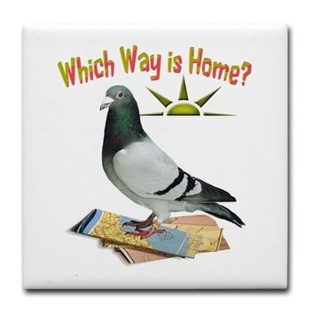 WHICH WAY IS HOME? FUN LOST PIGEON ART TILE COASTE