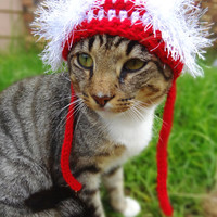 Christmas Cat Hat Costume - The Wackadoodle Christmas Hat for Cats and Small Dogs - Christmas Costume for Pets - Small Dog Hat