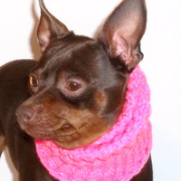 Dog Snood in Hot Pink