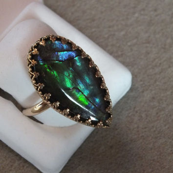 Gorgeous and huge ammolite in gallery 14K bezel, size 9