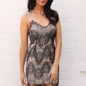 Sleeveless Eyelash Lace Mesh Insert Dress in Nude with Black