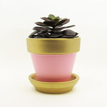 Terracotta Pot, Succulent Planter, Cute Planter, Pink Planter, Modern Planter, Indoor Planter, Succulent Pot, Flower Pot, Small Pot