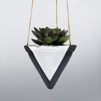 Air Planter, Hanging Planter, Succulent Planter, Concrete Planter, Black Planter, Modern Planter, Geometric Planter, Succulent Pot, White