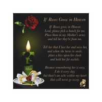 If Roses Grow in Heaven 12x12 Canvas Print