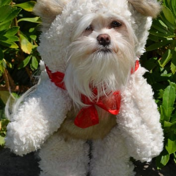 Adorable Soft Cream colored Teddy Bear (Looks Like It Is Walking) Dog Costume! For smaller breed dogs only