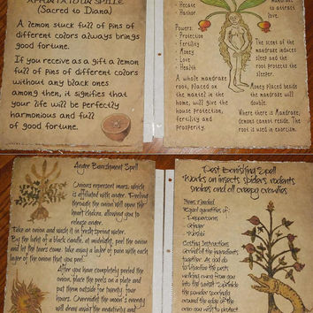 Secret Circle Replica Spell Pages (Mounted Pages)