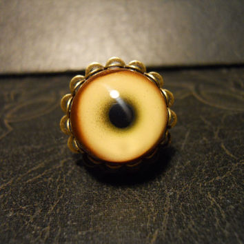 Full Moon WOLF Eye Taxidermy Glass Eye Ring
