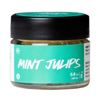 Mint Julips Lip Scrub