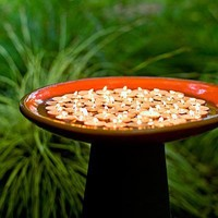 Great ideas for outdoor lighting - Sunset.com