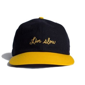 Altru Apparel Live Slow text embroidered Snap back cap