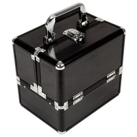 Large Beauty Make Up Vanity Train Case Cosmetic Box Black Line Finish