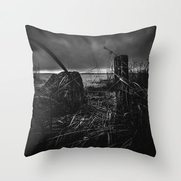 On the wrong side of the lake 14 Throw Pillow by HappyMelvin