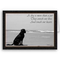 Death of a pet, dog death, sad, dog looking out card from Zazzle.com