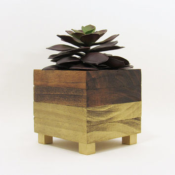 Succulent Planter, Modern Planter, Wood Planter, Geometric Planter, Succulent Pot, Small Planter, Planter Box, Indoor Planter, Gold Planter