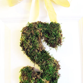 Moss Letter Wreath Monogram Elegant Front Door Decor Wedding Initial FREE SHIPPING