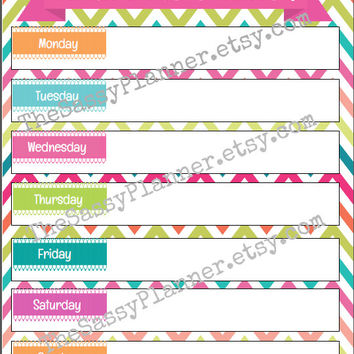 PRINTABLE Meal Planner & Grocery List Dashboard Insert for Erin Condren/Plum Paper Planner