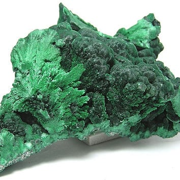 Dark Green Chatoyant Fibrous and Botryoidal Malachite Natural Large Mineral Specimen