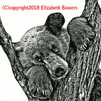 brown bear in tree original art print ink animal illustration black and white