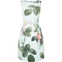 Ted Baker Eleta Distinguishing Rose Dress