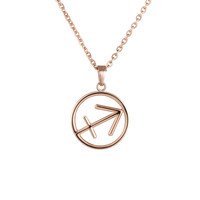 IP Gold Rose Gold New Style Zodiac Sagittarius Stainless Steel Necklace Pendant ,2015 Best Christmas Gift Jewelry For Women