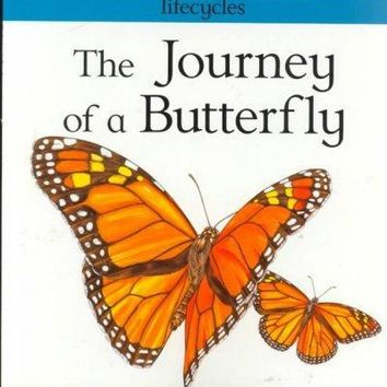 The Journey of a Butterfly (Lifecycles): The Journey of a Butterfly