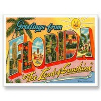 Greetings from Florida FL -2 Postcards