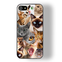 Cat Riot iphone case