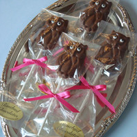 12 Chocolate Owl Lollipops Baby Shower Favors Hoot Bird Birthday Party Candy