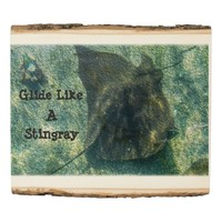 Glide Like a Stingray Underwater Your Quote Wood Panel