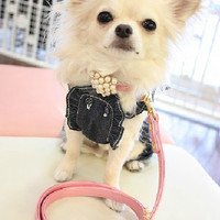 Variety of Powdered Pearls Pet Collars Leashes for Dogs Fashion & Style-Size X-Small