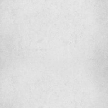 TEXTURE SOLID LIGHT GRAY BACKDROP - 9x16 - LCPC9072 - LAST CALL