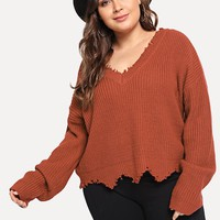 Plus V Neck Raw Cut Trim Sweater